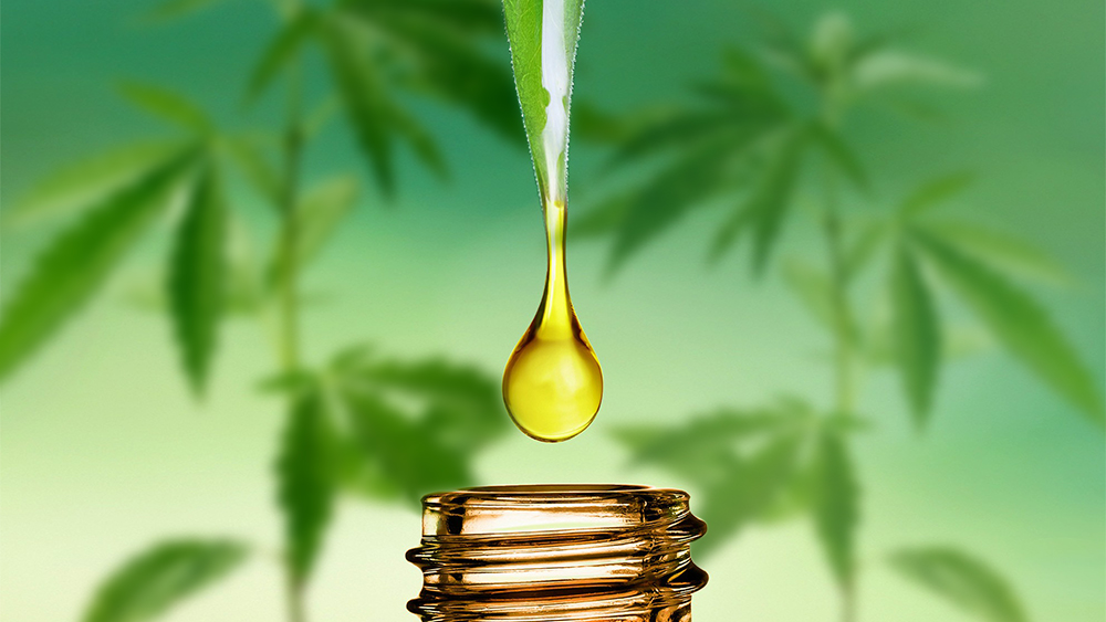 Cannabidiol (CBD) Extraction Methods