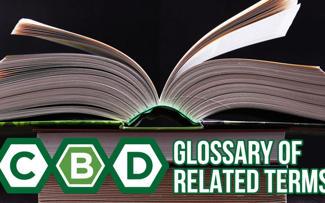 CBD Glossary of Terms